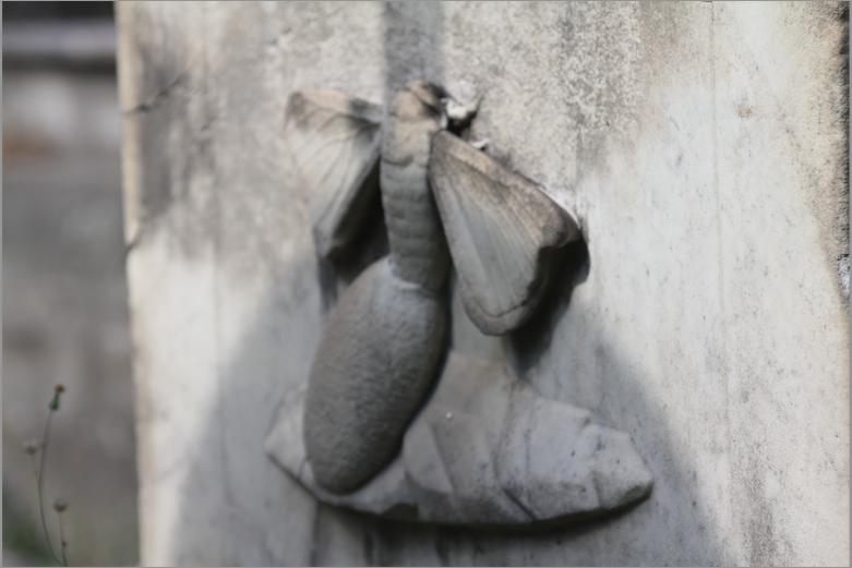 Simbología funeraria la mariposa